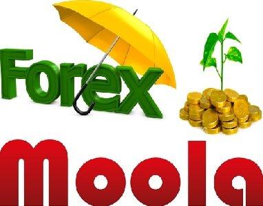 Forex Moola EA
