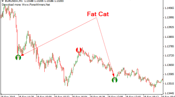 Download Free Fat Cat Forex Scalper Indicator